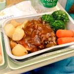 ダナン行きベトナム航空のエコノミー機内食レビュー